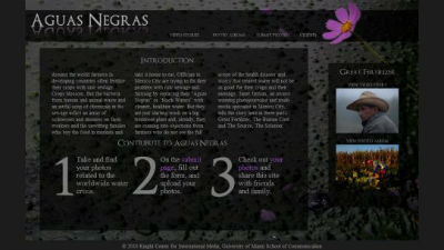 Aguas Negras Web Development